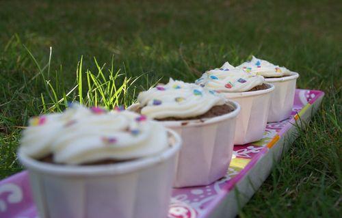 Cupcakes-chocolat1