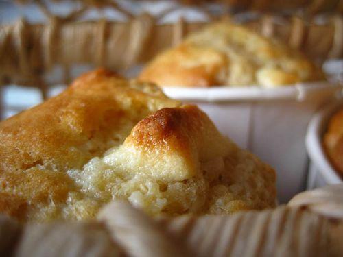 Muffins-macadamia-chocolat-blanc1