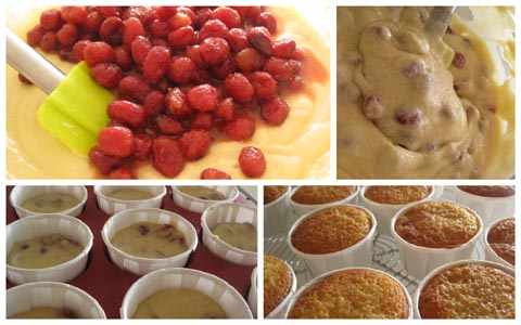 Cupcakes-cranberries-montage1