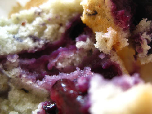 Cupcakes-myrtilles6