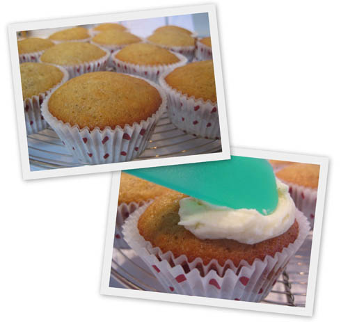 Cupcakes-vanille-coco1