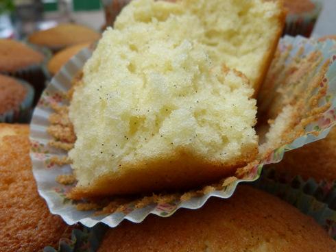 Cupcakes-vanille5