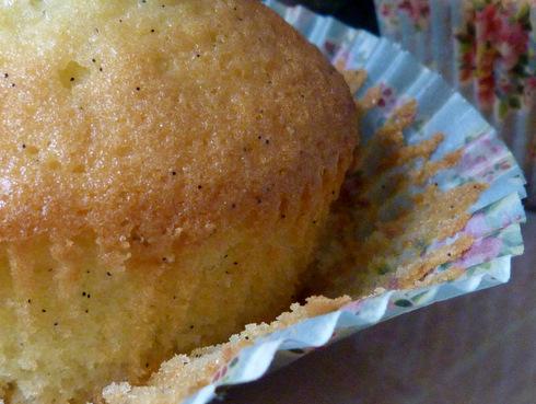Cupcakes-vanille3
