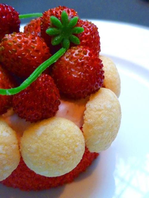 Shangri-la-cupcakes5