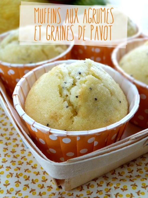 Muffins-agrumes-graines-pavot1