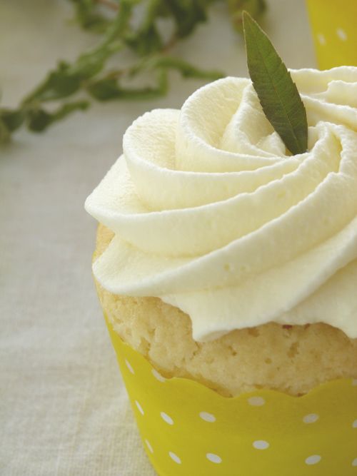 Cupcakes-citron-verveine3